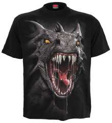 Girls T-Shirt ROAR OF THE DRAGON
